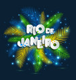 rio de janeiro from brazil vector image