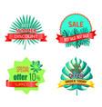 special summer offer promo tropical emblems set vector image vector image