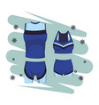 sport clothes for women and men vector image