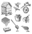apiary sketch icons honey dipper hive honeycomb vector image