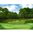 Forest scene with trees and field vector image vector image