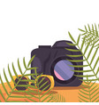 photography camera and sunglasses exotic branch vector image vector image