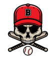 skull with crossed baseball bat and wearing a cap vector image vector image