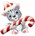 christmas cat with candy cane vector image