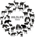 collection of silhouettes of different species of vector image vector image