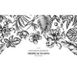 floral design with black and white monstera vector image vector image