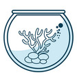marine coral in aquarium vector image