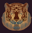 muzzle of a tiger for creating sketches of vector image vector image