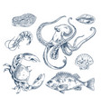 seafood sketch monochrome poster vector image vector image