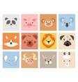 set cute smiling simple animal portraits vector image