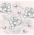Background with black and white peony vector image