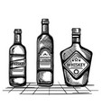 best whiskey set bottles drawn vector image