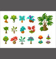 colorful fantasy tropical trees and plants nature vector image