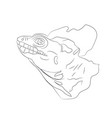 portrait of a lizard lines vector image