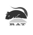simple shape rat icon or logo for web vector image vector image