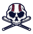 skull with crossed baseball bat logo badge vector image vector image