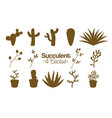 succulent and cactus desert plants vector image vector image