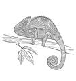 Zentangle stylized Chameleon lizard Hand Drawn vector image