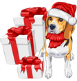 Dog Beagle in the red hat of Santa Claus