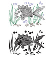 fish and seaweed decorative vector image vector image