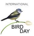international day of birds vector image vector image