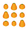 orange pumpkin set halloween vegetable vector image vector image
