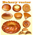 set of fresh baked blusher isolated vector image vector image