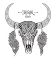Hand drawn of bull skull with feathers vector image