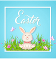 Rabbit sitting on a green grass vector image
