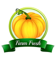 A farm fresh label with a pumpkin vector image vector image