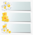 A set of banners with 3d yellow daffodils Spring vector image vector image
