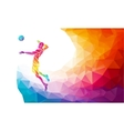 Color silhouette of volleyball player on attack vector image