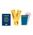 passport and airplane tickets summer vector image vector image