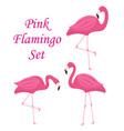 pink flamingo set of objects isolated on white vector image vector image