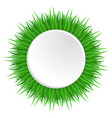 round frame with realistic grass vector image