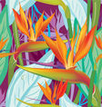 Seamless floral pattern with Strelitzia vector image vector image