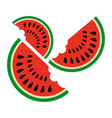 watermelon slices on a white background vector image vector image
