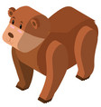 3d design for grizzly bear vector image vector image