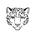 black and white sketch head of leopard vector image
