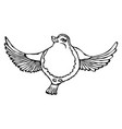 cute adorable bird flying isolated on a white vector image