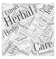 Herbal Skin Care Word Cloud Concept vector image