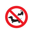 no pets sign vector image vector image