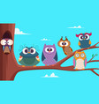 owls branches cute funny group wild babirds vector image