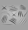 realistic claw scratch paper cut and scratch vector image vector image