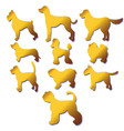 set of silhouettes cartoon gold dog different vector image
