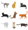 cartoon different types cute cats characters icon vector image vector image
