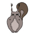 cute adorable squirrel isolated on a white vector image vector image