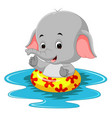 funny elephant swimming using ringball vector image vector image