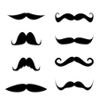 mustache in a set vector image