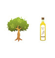 olive oil bottle and tree in vector image